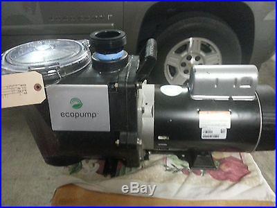 EcoPump Pool Pump